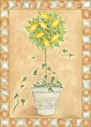 Tuscan Fruit II by Chariklia Zarris art print