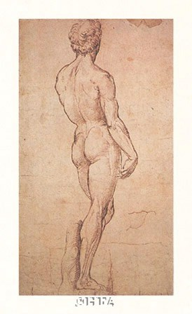 Nude Study by Raphael art print