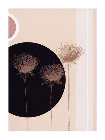 Three Dandelions on black circle by J. Parry art print
