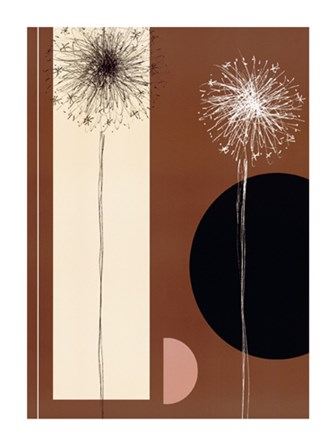 Black and white Dandelions by J. Parry art print
