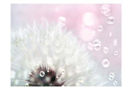 Pink Dandelion by Tracey Telik art print