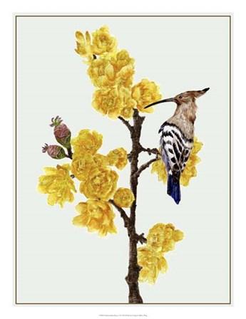 Chimonanthus Praecox II by Melissa Wang art print