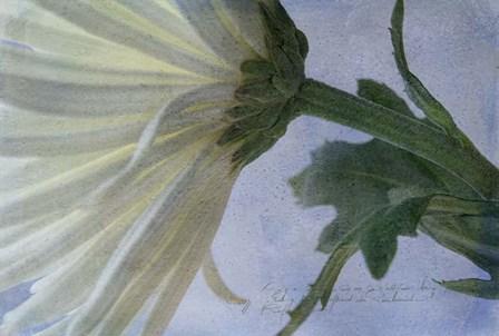 Fuji Green by Bob Rouse art print