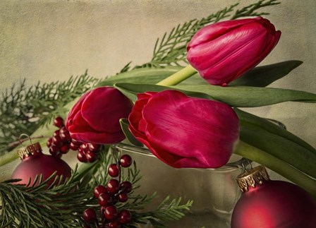 Holiday Red by Bob Rouse art print