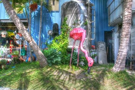 Pink Flamingo by Robert Goldwitz art print