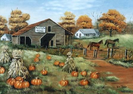 Cooksville Barn by Arie Reinhardt Taylor art print