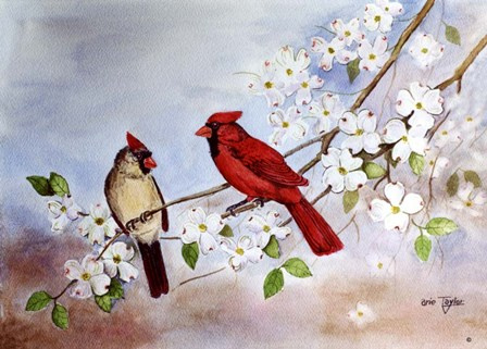 Cardinals and Dogwood by Arie Reinhardt Taylor art print