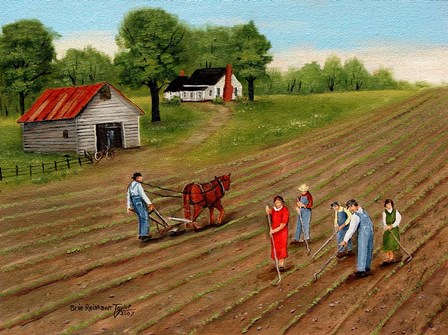 Choppn' Cotton 2 by Arie Reinhardt Taylor art print