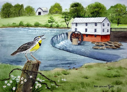 Meadowlark and Murray's Mill by Arie Reinhardt Taylor art print