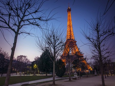 Eiffel Lit Up by Assaf Frank art print