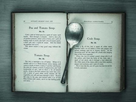 Book & Spoon 3 by Assaf Frank art print