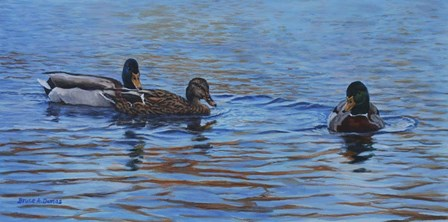 Autumn Outing Mallards by Bruce Dumas art print