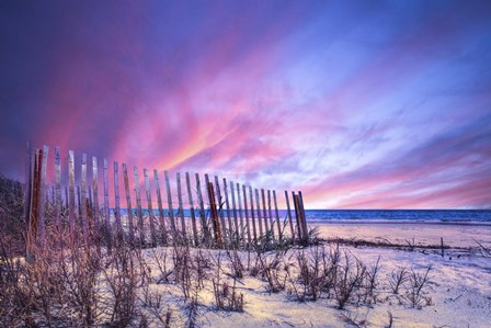 Beach Fences by Celebrate Life Gallery art print