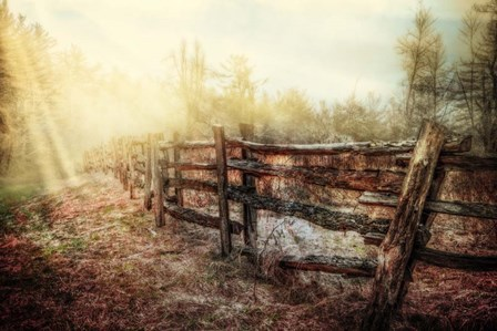 Wood Fences In The Fog by Celebrate Life Gallery art print