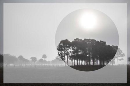 Sunrise Circles by Celebrate Life Gallery art print