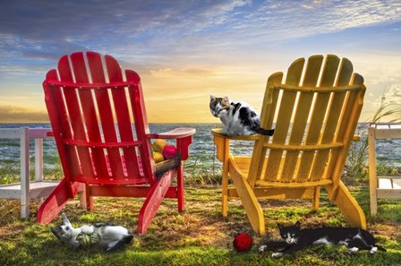 Cat Nap at the Beach by Celebrate Life Gallery art print