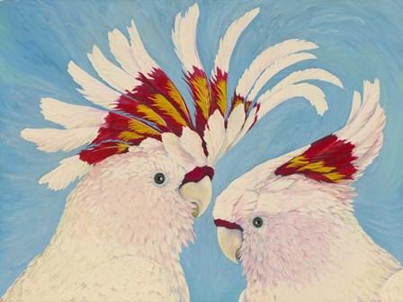 Major Mitchell's Cockatoos by Tim Marsh art print