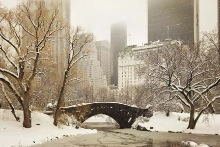 Central Park Bridge by Wiff Harmer art print