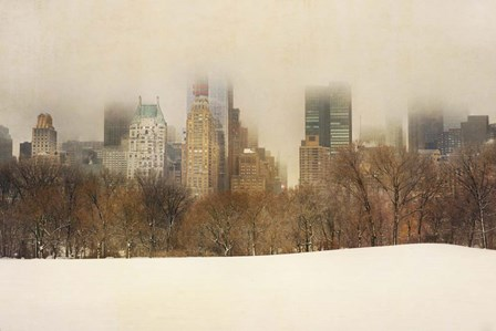 Foggy Central Park by Wiff Harmer art print