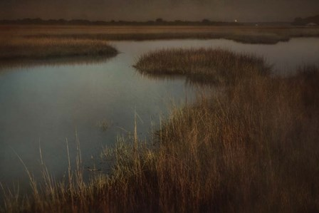 Marsh by Wiff Harmer art print